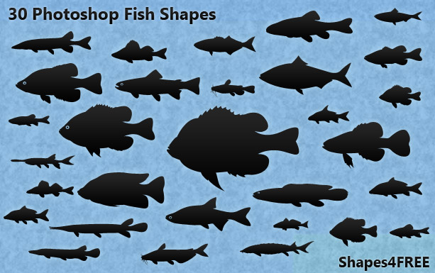 30 photoshop fish shapes photoshop custom shapes for Too cool fishing