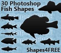 30 Photoshop Fish Shapes – Natural Fish